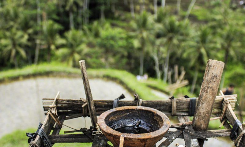 Le Risaie Di Tegalalang Bali Blog Di Viaggi Storie Diverse