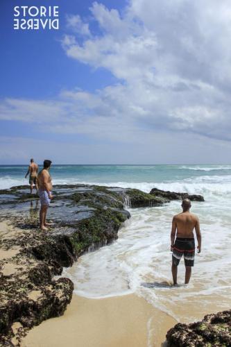 MG_2135 Bali - il paradiso dei surfisti