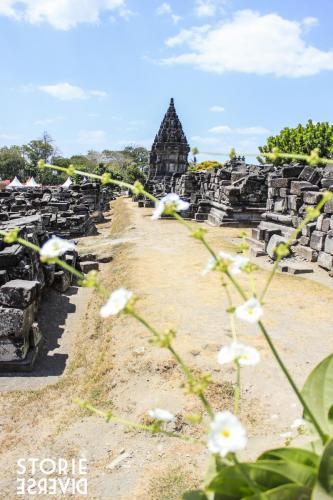 MG_3037-2 Yogyakarta - Il tempio Induista del Prambanan