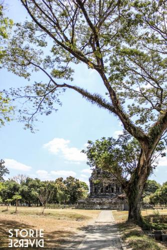 MG_3061 Il tempio Induista del Prambanan