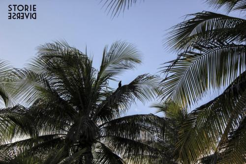 MG_7897 Isla Mujeres - vita da isolani