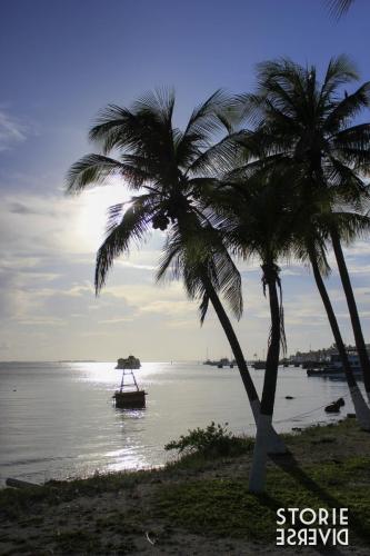 MG_7899 Isla Mujeres - vita da isolani