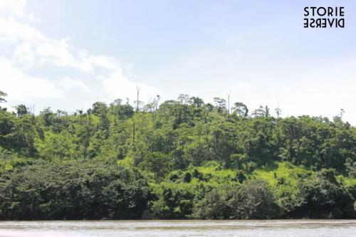 MG_8543 Dal Rio Usumacinta ai siti di Yaxchilán e Bonampak | Chiapas