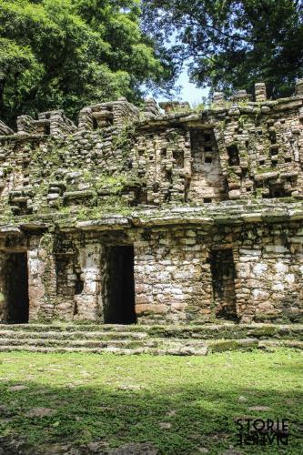 MG_8556 Dal Rio Usumacinta ai siti di Yaxchilán e Bonampak | Chiapas