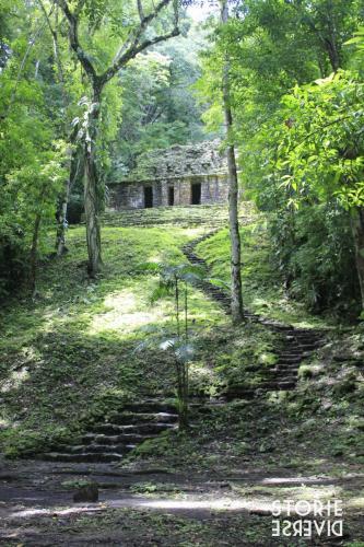 MG_8557 Dal Rio Usumacinta ai siti di Yaxchilán e Bonampak | Chiapas