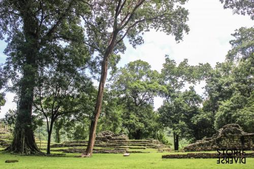 MG_8560 Dal Rio Usumacinta ai siti di Yaxchilán e Bonampak | Chiapas