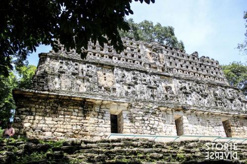 MG_8573 Dal Rio Usumacinta ai siti di Yaxchilán e Bonampak | Chiapas