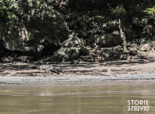 MG_8837 Dal Rio Usumacinta ai siti di Yaxchilán e Bonampak | Chiapas