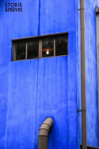 MG_9543-2 La Casa Azul