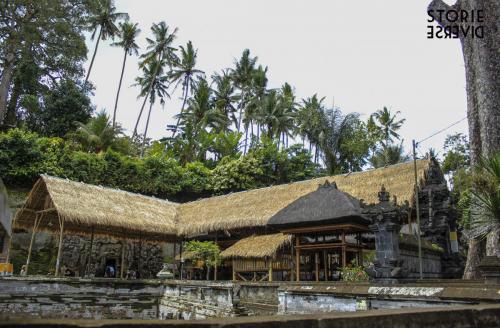 _MG_1440 Goa Gajah: la Grotta dell'elefante | Bali