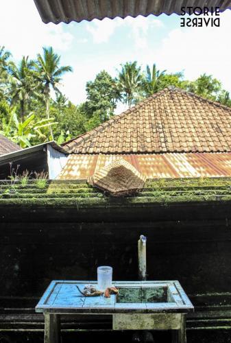 _MG_1484 Goa Gajah: la Grotta dell'elefante | Bali