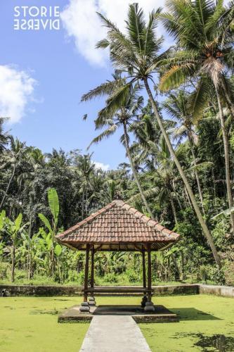 _MG_1496 Goa Gajah: la Grotta dell'elefante | Bali