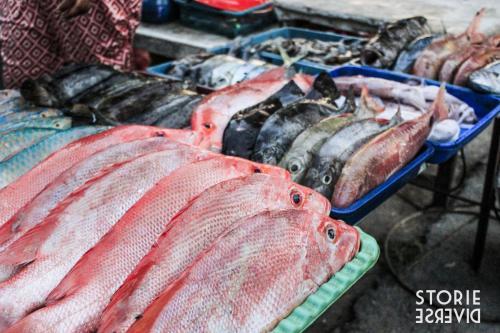 _MG_2718 Le isole Karimunjawa - Indonesia | Guida fai da te