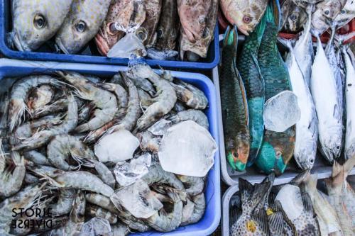 _MG_2721 Le isole Karimunjawa - Indonesia | Guida fai da te