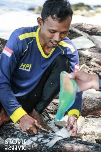 _MG_2798 Le isole Karimunjawa - Indonesia | Guida fai da te