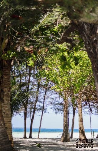 _MG_2804 Le isole Karimunjawa - Indonesia | Guida fai da te